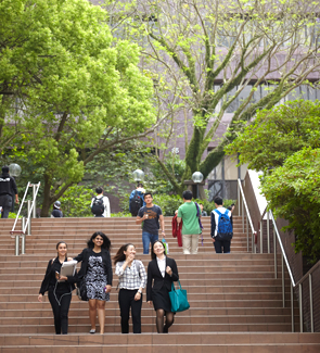 essay university entrance requirements